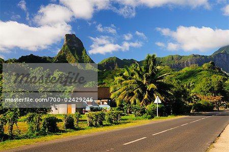 Mt Tearai, Moorea, Society Islands, French Polynesia, South Pacific Stock Photo - Rights-Managed, Image code: 700-02429246