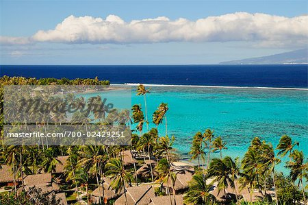 Temae Beach, Moorea, Society Islands, French Polynesia, South Pacific Stock Photo - Rights-Managed, Image code: 700-02429251
