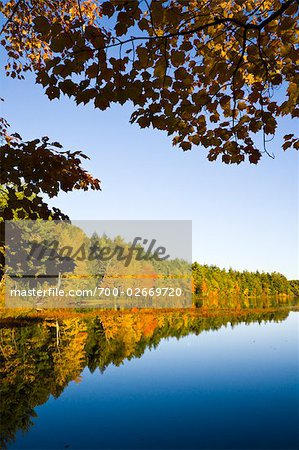 Autumn Forest by Lake, Vermont, USA Stock Photo - Rights-Managed, Image code: 700-02669720