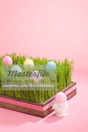 Easter Eggs in Grass Filled Tray Stock Photo - Rights-Managed, Image code: 700-02694065