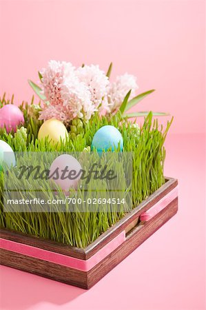 Easter Eggs and Hyacinths Stock Photo - Rights-Managed, Image code: 700-02694514