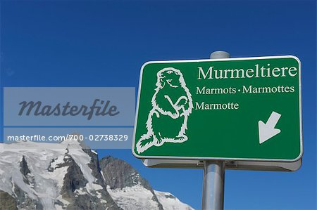 Marmot Sign with Grossglockner in Background, Hohe Tauern, Austria