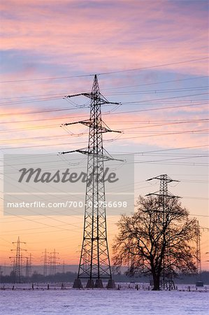 Old Willow Trees by High Voltage Hydro Tower at Sunrise, Siegburg, North Rhine-Westphalia, Germany Stock Photo - Rights-Managed, Image code: 700-02756698