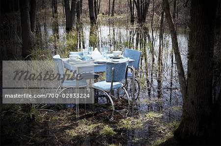 Vintage Kitchen Table and Chairs With Place Settings in the Middle of a Swamp Stock Photo - Rights-Managed, Image code: 700-02833224