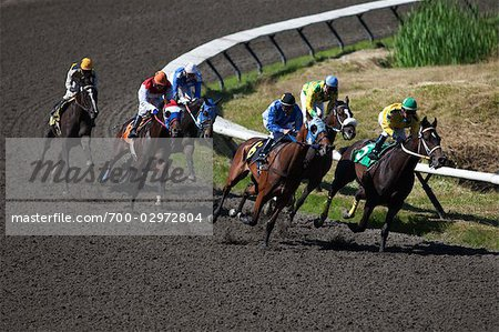 Horse Racing Stock Photo - Rights-Managed, Image code: 700-02972804