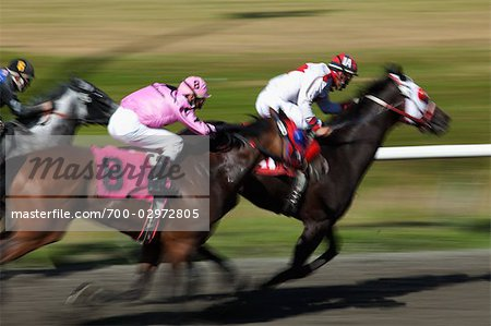 Horse Racing Stock Photo - Rights-Managed, Image code: 700-02972805