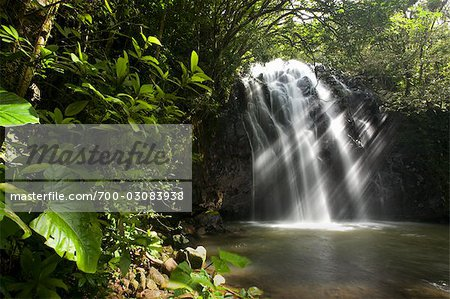 Waterfall, Queensland, Australia Stock Photo - Rights-Managed, Image code: 700-03083938