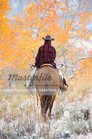 Cowgirl Riding Horse, Wyoming, USA Stock Photo - Rights-Managed, Image code: 700-03407506