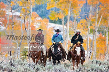 Cowgirl and Cowboys Riding Horses, Wyoming, USA Stock Photo - Rights-Managed, Image code: 700-03407510