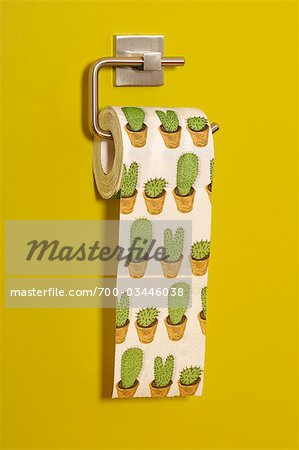 Cactus Print Toilet Paper Stock Photo - Rights-Managed, Image code: 700-03446038