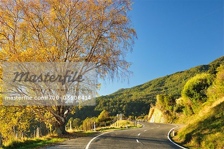 Takaka Hill Highway, Tasman Region, South Island, New Zealand Stock Photo - Rights-Managed, Image code: 700-03508414