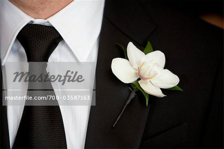 Close-up of Groom's Boutonniere Stock Photo - Rights-Managed, Image code: 700-03587163