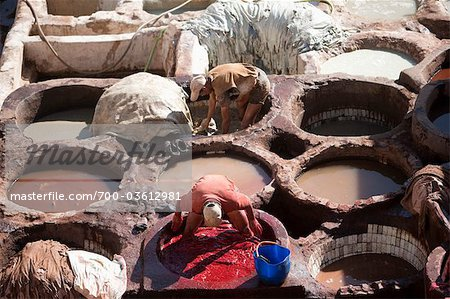 Tannery, Fez, Morocco Stock Photo - Rights-Managed, Image code: 700-03612981