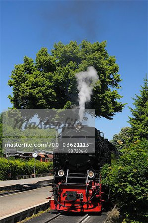 Harz Narrow Gauge Railways, Wernigerode, Harz, Saxony Anhalt, Germany Stock Photo - Rights-Managed, Image code: 700-03621113