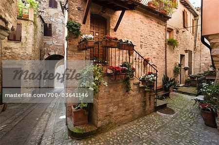 Cobblestone Street in Spello, Umbria, Italy Stock Photo - Rights-Managed, Image code: 700-03641146