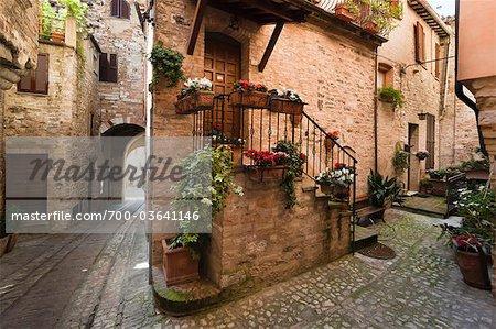 Cobblestone Street in Spello, Umbria, Italy