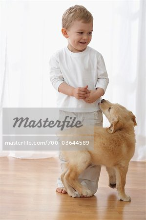 Little Boy With Goldendoodle Puppy Stock Photo - Rights-Managed, Image code: 700-03644589