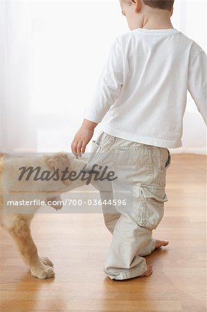 Goldendoodle Puppy Pulling on Boy's Pants Stock Photo - Rights-Managed, Image code: 700-03644596