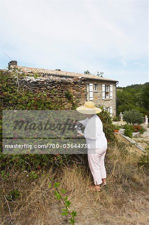 Woman Gardening, Domaine de l'Ardagnole, Fajac-en-Val, Aude, Languedoc Roussillon, France Stock Photo - Rights-Managed, Image code: 700-03644736