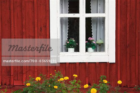 Window and Flower Pots, Smaland, Sweden Stock Photo - Rights-Managed, Image code: 700-03659291