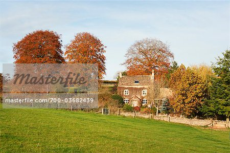 Old Farmhouse Surrounded by Trees in Autumn, Cotswolds, Gloucestershire, England Stock Photo - Rights-Managed, Image code: 700-03682439