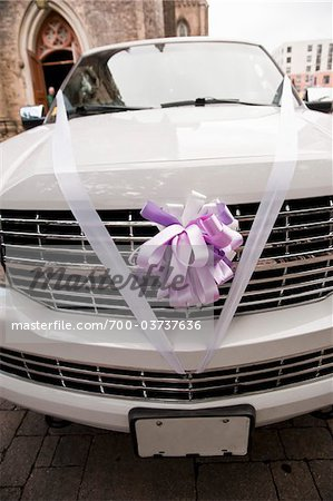 Limousine Decorated for Wedding Stock Photo - Rights-Managed, Image code: 700-03737636
