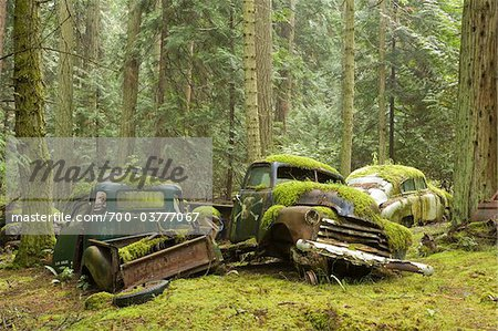 Car Graveyard, Valdes Island, British Columbia, Canada Stock Photo - Rights-Managed, Image code: 700-03777067