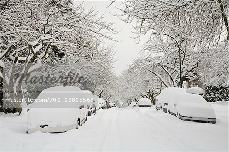 Fresh Snowfall, Dunbar-Southlands Neighbourhood, Vancouver, British Columbia, Canada Stock Photo - Rights-Managed, Image code: 700-03805568