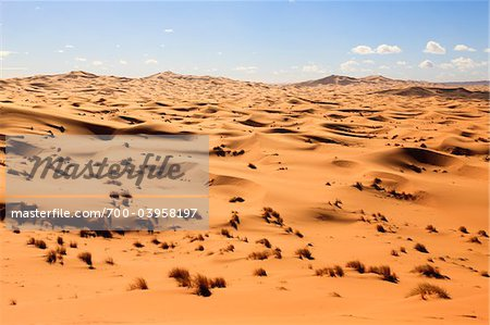 Sand Dunes and Desert Grass,Erg Chebbi, Morocco Stock Photo - Rights-Managed, Image code: 700-03958197