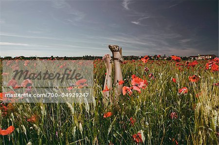 Woman's Legs in Poppy Field Stock Photo - Rights-Managed, Image code: 700-04929247