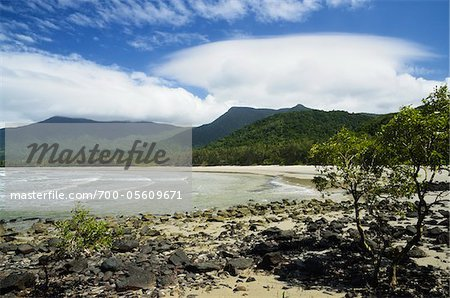 Myall Beach, Daintree National Park, Queensland, Australia Stock Photo - Rights-Managed, Image code: 700-05609671