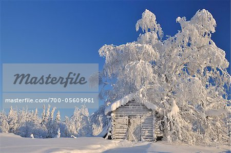Log Cabin in Winter, Kuusamo, Northern Ostrobothnia, Finland Stock Photo - Rights-Managed, Image code: 700-05609961