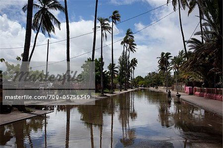 Flooded Street in Aftermath of Typhoon, Toliara, Madagascar Stock Photo - Rights-Managed, Image code: 700-05756349
