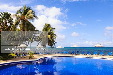 Swimming Pool, Praslin Island, Seychelles Stock Photo - Rights-Managed, Image code: 700-05786255