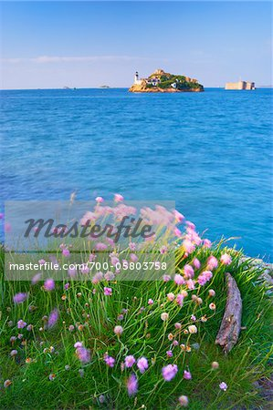 View of Louet Island and Chateau de Taureau, Bay of Morlaix, Finistere, Bretagne, France Stock Photo - Rights-Managed, Image code: 700-05803758