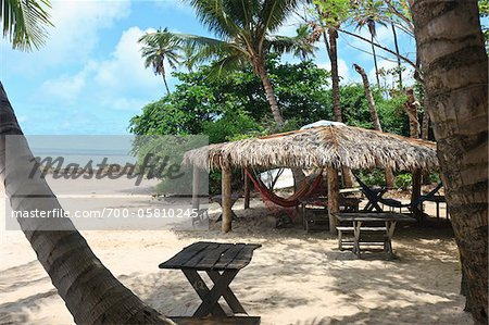 Thatched Roof Hut with Hammocks, Praia de Tabatinga, Paraiba, Brazil Stock Photo - Rights-Managed, Image code: 700-05810245
