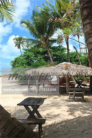 Thatched Roof Hut with Hammocks, Praia de Tabatinga, Paraiba, Brazil Stock Photo - Rights-Managed, Image code: 700-05810246