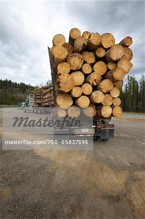 Logging Truck Stock Photo - Rights-Managed, Image code: 700-05837595