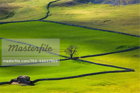 Overview of Fields, Crummack Dale, Yorkshire Dales, North Yorkshire, England Stock Photo - Rights-Managed, Image code: 700-06007900
