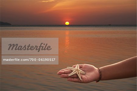 Person Holding Starfish in Hand, Pak Meng Beach, Trang, Thailand Stock Photo - Rights-Managed, Image code: 700-06190517
