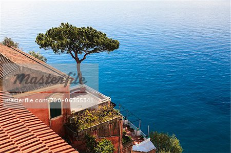 Tree and House on Coast of Mediterranean Sea, Positano, Campania, Italy Stock Photo - Rights-Managed, Image code: 700-06355341