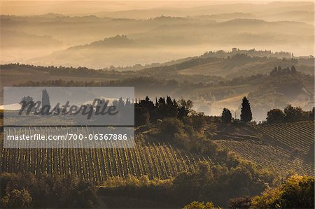Fog over Vineyards at Dawn, Chianti, Tuscany, Italy Stock Photo - Rights-Managed, Image code: 700-06367886