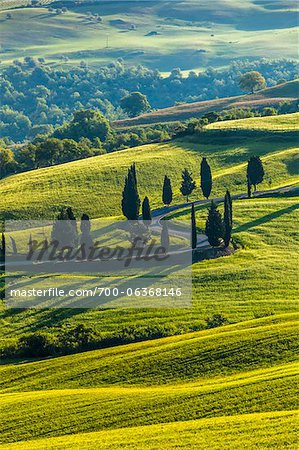 Winding Road, Monticchiello, Val d'Orcia, Province of Siena, Tuscany, Italy Stock Photo - Rights-Managed, Image code: 700-06368146