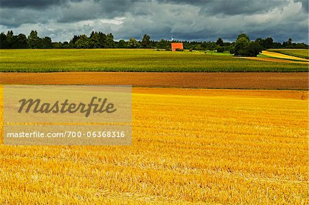 Barn and Farmland, near Villingen-Schwenningen, Black Forest, Schwarzwald-Baar, Baden-Wurttemberg, Germany Stock Photo - Rights-Managed, Image code: 700-06368316