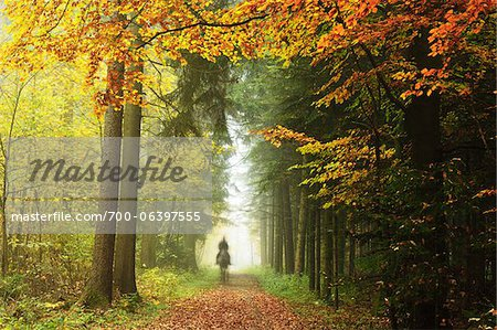 Person Riding Horse in Forest, Neckar Valley, near Villingen-Schwenningen, Baden-Wurttemberg, Germany Stock Photo - Rights-Managed, Image code: 700-06397555