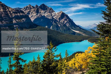 Overview of Peyto Lake as seen from Bow Summit, Banff National Park, Alberta, Canada Stock Photo - Rights-Managed, Image code: 700-06465437
