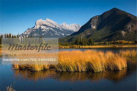 Long Grass Growing in Vermilion Lakes with Mount Rundle and Sulphur Mountain, near Banff, Banff National Park, Alberta, Canada Stock Photo - Rights-Managed, Image code: 700-06465462
