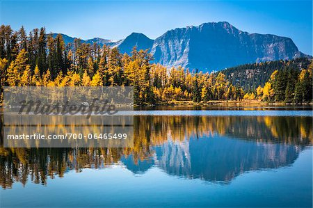Larix Lake with Autumn Larch, Rock Isle Trail, Sunshine Meadows, Mount Assiniboine Provincial Park, British Columbia, Canada Stock Photo - Rights-Managed, Image code: 700-06465499