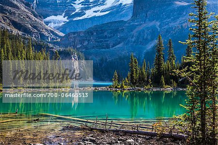 Evergreen Trees and Alpine Lake at Base of Mountains, Lake O'Hara, Yoho National Park, British Columbia, Canada Stock Photo - Rights-Managed, Image code: 700-06465513