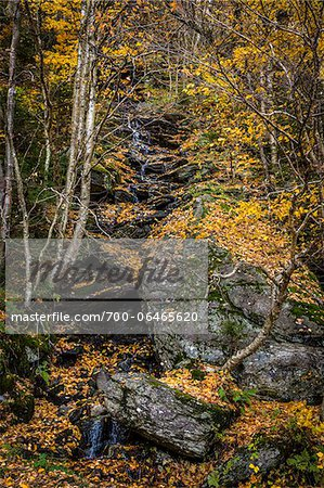 Boulder and Forest Stream in Autumn, Smugglers Notch, Lamoille County, Vermont, USA Stock Photo - Rights-Managed, Image code: 700-06465620